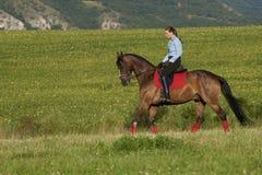 Go horse riding Stock Photo