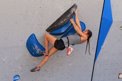 Free Go Pro Mountain Games Climbing Competition - Vail, Colorado Royalty Free Stock Photography - 121173077