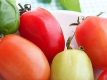 Goût des tomates d'été Photo stock