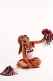 Go team!. A portrait of a cute girl in a cheerleading outfit stock photography