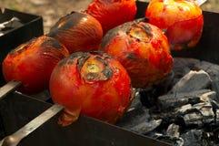 Goûtez les tomates images stock
