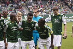 Go Timbers! Royalty Free Stock Photo