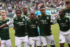 Go Timbers! Royalty Free Stock Image