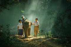 Go to school with elephant. Elephant took the children to school at Elephant Village Thailand stock photos