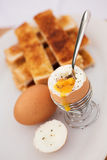 Go to work on an egg Royalty Free Stock Photography