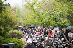 Go to Xuanwu Lake to play the crowd Stock Image
