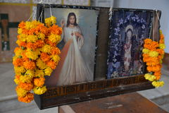 Goa的Se大教堂 库存照片