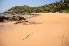 goa дезертированное пляжем тропическое стоковое фото