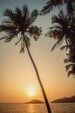 Goa Индии Стоковое фото RF