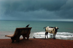 Goa Beaches in India. Goa beach during the monsoon stock images