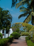 Goa de paysage Image stock