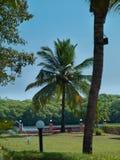 Goa del paesaggio Fotografie Stock