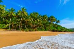 Goa del paesaggio Fotografia Stock Libera da Diritti