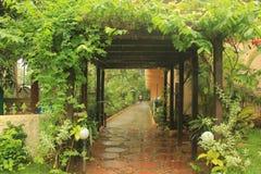 Goa deszcze fotografia stock