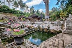 Goa Gajah świątynia w Bali, Indonezja Fotografia Royalty Free
