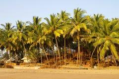 Goa.India. Royalty Free Stock Image