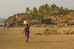 GOA, INDIEN - 4. MÄRZ: Frau in den Sari mit Korb auf ihrem Kopf wal Stockfotografie