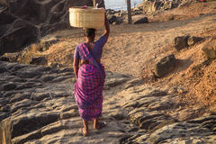 GOA, INDIEN - 4. MÄRZ: Frau in den Sari mit Korb auf ihrem Kopf wal Lizenzfreies Stockfoto