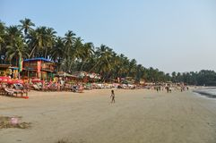 Palolem beach in Goa royalty free stock photo