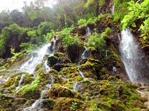 Goa Tetes (den Tetes grottan) på Lumajang Royaltyfria Foton