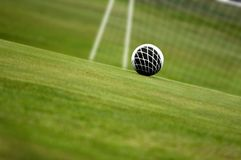 GOAL!!! Royalty Free Stock Photos