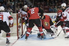 Goal! Dion Phaneuf & Mike Condon look at puck. stock photo