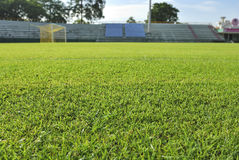 Goal and Green grass soccer field. Focus on grass Stock Photography