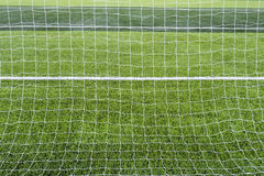 Goal net with green grass field. Stock Images