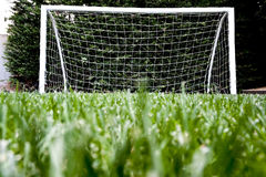 Goal post on green grass playground Stock Image