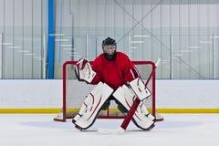 goalie πάγος χόκεϋ Στοκ Εικόνα