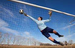 Goalie Royalty Free Stock Image