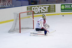 Goalie Stock Photography