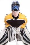 Goalie do hóquei de gelo ilustração royalty free