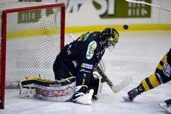 Goalie do hóquei em gelo Fotografia de Stock