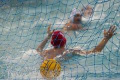 Goalie för vattenpolo Royaltyfri Fotografi