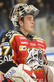 goalie gustafsson πάγος Johan χόκεϋ Στοκ εικόνες με δικαίωμα ελεύθερης χρήσης