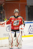 goalie gustafsson πάγος Johan χόκεϋ Στοκ Εικόνες