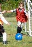 Goalie na ação Imagens de Stock Royalty Free