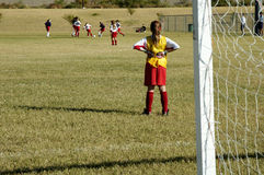 Goalie watching the action. A goalie watches the action in a girls soccer game Royalty Free Stock Photo