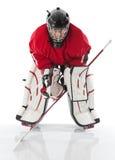 goaliehockeyis Arkivbild