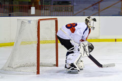 goaliehockeyis Royaltyfri Fotografi