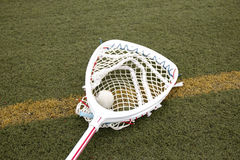 Goalies lacross stick with a ball in the net. Lacrosse goalie stick with a ball in the netting on a green turf field Royalty Free Stock Photography