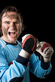 The goalkeeper Royalty Free Stock Photo
