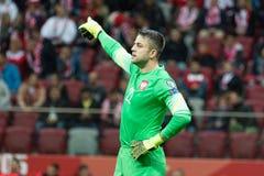 goalkeeper royalty-vrije stock foto's