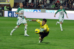Goalkeeper in action Royalty Free Stock Image