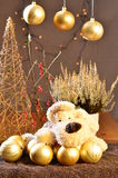 The Goalkeeper at Christmas. Funny dog with Christmas decoration balls Royalty Free Stock Images