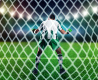 Goalkeeper on the field Royalty Free Stock Images