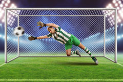 Goalkeeper on the field Royalty Free Stock Photos