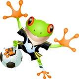 Goalkeeper frog Stock Images