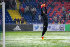 Goalkeeper Igor Akinfeev 35 Royalty Free Stock Image